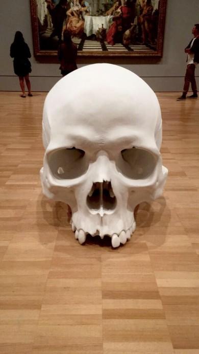 mueck skull 1